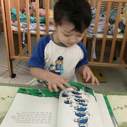 Little boy enjoying a book